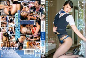 本庄鈴 美人キャビンアテンダントを高級ホテルの一室でいいなり調教
