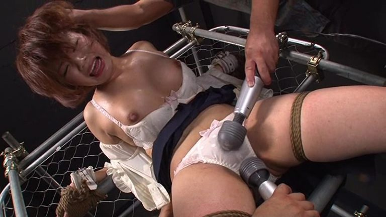 性奴開発研究所 ~快楽絶頂に狂い哭く女体~ 飼育記録 Vol.3 芦川芽依